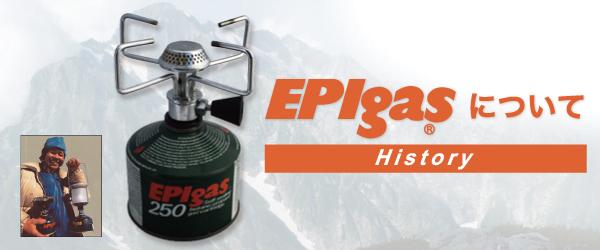 EPIgassについて History